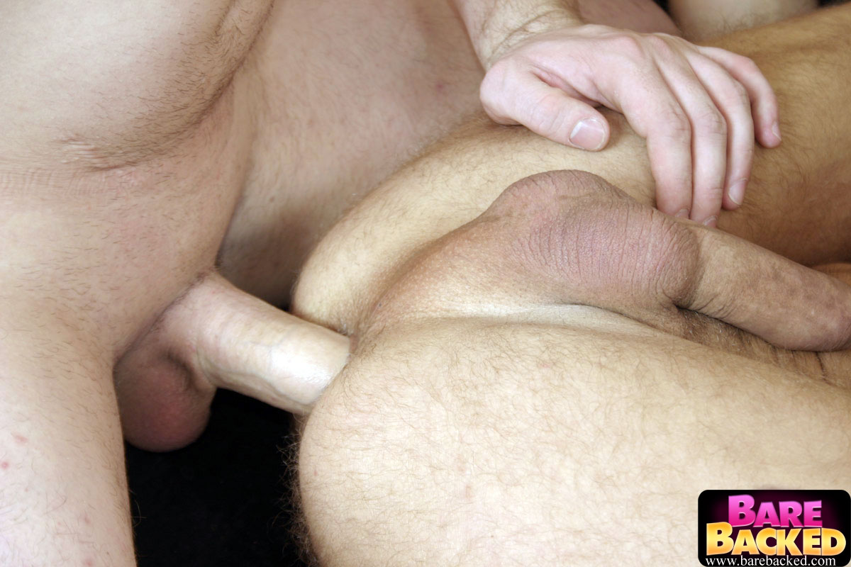free gay sex cam chat